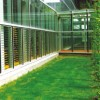 Offer Clear Louver Glass